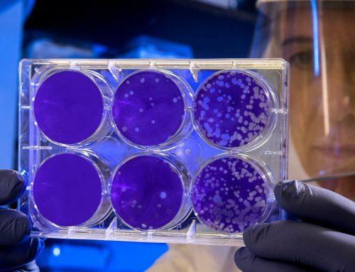 Coronavirus e affitti brevi: cancellazioni, tendenze e strategie