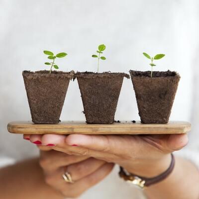 potenzialità della sostenibilità